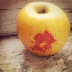 kiss on the apple